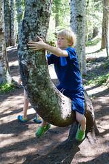 trillium lake family hike (dolanh) Tags: hiking mthoodwilderness oregon lucas tree trilliumlake