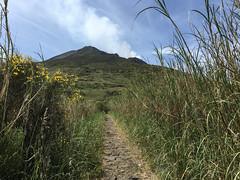 Stromboli, Italy 2016 - 20 (Manfred Lentz) Tags: italien italy sizilien sicily stromboli insel island