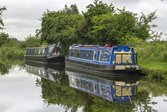 Day Seven: Stafford to Gailey (Kev Gregory (General)) Tags: day seven sailing black country ring stafford gailey staffordshire blackbuck buck narrow boat barge narrowboat kev gregory canon 7d canal england midlands