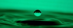 Caught in a moment. (padge83) Tags: nikon d5300 waterdroplets macro bokeh green splash frozen westyorkshire