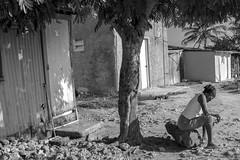 DR10393/ nada mas que dios.................... (Glenn Losack, M.D.) Tags: dominicanrepublic larepublicadominicana haitians poverty poor rocks stones desperation caribe photojournalism street photographer