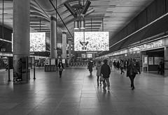 The Ticket Hall (D_Alexander) Tags: uk england london eastlondon docklands canarywharfstation londonundergroundstations londonunderground thetube blackandwhitephotography jubileeline