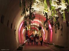 zagreb underground tunnel3