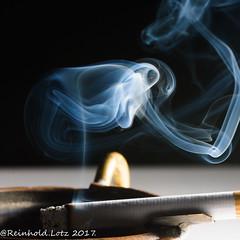 """Poisonous Smoke (Reinhold.Lotz) Tags: installation macro mondays """"poisonous"""" macromondays kirtorf hessen deutschland de smoke"""
