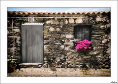 La ventana feliz (puertas y ventanas) (V- strom) Tags: puerta door ventana window arquitectura arquitecture abandonado abandoned azul blue fucsia planta portugal toulões texturas textures nikon nikon2470 nikon50mm viajes travel