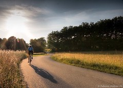 Sunset Cycling (Fabrizio Malisan Photography @fabulouSport) Tags: cycletourism cycletouring cicloturismo italy piemonte piedmont cyclingphotographer cyclingphotography training fitness fit landscape womancyclist womancycling woman donna femme sport bicisport rouleur été juin giugno estate june summer goldenhour goldenlight light campagne campagna countryside country roads road bicicleta bicicletta coucherdusoleil sunsets tramonti travel tramonto sunset bicidacorsa ciclista ciclismo velo bici bike riding rider ride bicycle cycle cycling cyclist