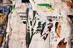 poster n.2 (Vincenzo Elviretti) Tags: perugia provincia umbria manifesto pubblicità politica occhio eyes boldrini giorgia meloni massoneria riflessi rivista stocazzo andate tutti fanculo affanculo destra altra italia astratto abstract trama muro poster constrasto chissà che cè scritto legno