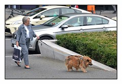Just Walking the Dog, Berlin (junepurkiss) Tags: dog dogwalking walkingthedog dogwalker berlin germany