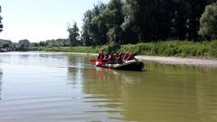 Donauauen3abJuni2017-006