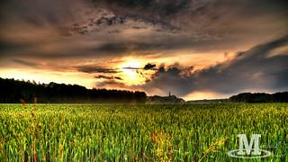 Sunset above Wallsee