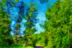 Rihula (Kalev Vask.) Tags: digital kalevvask postprocessed photoshop photomanipulation digiart photoart painterly artistic creative estonia summer trees dap