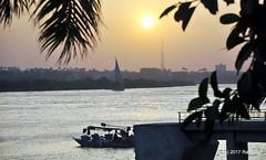 DSC_0346 (RachidH) Tags: sun sunset coucherdusoleil crépuscule sundown cairo egypt nile river rachidh nature felouca sailboat