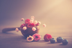 Fruits and flowers (RoCafe Off for a while) Tags: fruits stilllife flowers spoon wood table backlight naturallight pink red soft softfocus nikkormicro105f28 nikond600