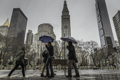 Rainy Days Are Here Again (Explore) (PetterPhoto) Tags: newyork pettersandell manhattan madisonsquarepark broadway rain umbrella skyscraper urban city citylife candi street streetphotography streetlife