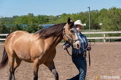 JBC_8216.jpg (Jim Babbage) Tags: krahc annualshow appaloosa horses