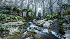 20170621_2387 (petetiller) Tags: petetiller petertiller tasmania landscape dam rainforest rocks water waterfalls waterfall stparisdam
