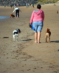 A Week North (graeme37) Tags: coffsharbour newsouthwales dogs dogsoffleash dogsofflead beach