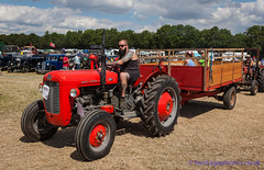 IMG_0174_Woodcote Rally 2017_0219 (GRAHAM CHRIMES) Tags: woodcote rally 2017 steam woodcoterally2017 woodcotesteamrally2017 woodcoterally transport traction tractionengine tractionenginerally steamrally steamfair showground steamengine show steamenginerally vintage vehicle vehicles vintagevehiclerally vintageshow heritage historic classic country commercial preservation wwwheritagephotoscouk restoration woodcotesteam masseyferguson 35x tractor 1963 174tyc