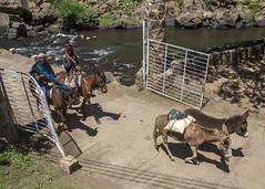 View from the terrace of the Duck and Donkey Tavern (Hans van der Boom) Tags: holiday vacation travel sawadee zuidafrika southafrica lesotho maseru semonkong smonkong lso