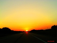 The Sun 92.96 million miles ahead (Anton Shomali - Thank you for over 1 million views) Tags: sun sunrise street morning summer ahead sky clouds heat red yellow trees bright dark light lights round nature road million east distance gold rise driving car speed autofocus coth5