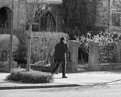 Connecté - Plugged (p.franche malade - sick) Tags: schaerbeek schaarbeek bruxelles brussel brussels belgium belgique belgïe europe pfranche pascalfranche panasonic fz200 hdr dxo flickrelite skancheli monochrome noiretblanc blackandwhite zwart wit blanco negro schwarzweis μαύροκαιάσπρο inbiancoenero 白黒 黑白чернобелоеизображение svartochvitt أبيضوأسود mustavalkoinen שוואַרץאוןווייַס bestofbw urban people streetshot smartphone cellular
