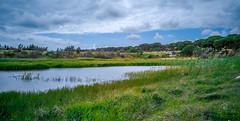 oásis! (ruimiguelmartiins) Tags: barragem muda portugal landescape alentejo céu rural campo clouds
