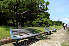IMG_0961 (okiee8125) Tags: 浜離宮恩賜公園 庭園 park