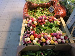 Multi-coloured radishes (Peter Curbishley) Tags: radish radis vegetable legume salad colour color couleur market france