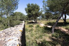 Mallorca 2017 (Stefan Giese) Tags: mallorca spanien spain canon 6d 24105mm mauer ruine steinmauer