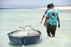 DSC_0243 (russellfenton) Tags: egypt marsaalam nikon nikon7200 7200 corayabeach steigenberger snorkelling sea boat fishing island