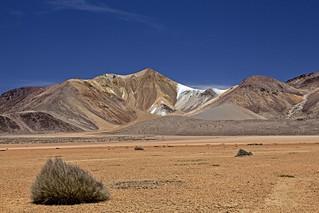 Ilarethra - Suri PLaza - Chile
