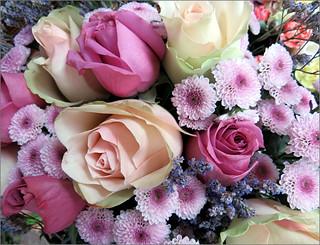 Bouquet for you  .....Explore #105  2/7/17