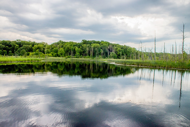 Pokagon State Park - Potawatomi Nature Preserve - June 20, 2017