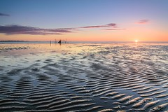 Summer evening (Ellen van den Doel) Tags: sand color rockanje nature fish reflectie sea summer 2017 net juni zand life pixels meeting natuur landscape sunset nederland outdoor evening zeeland lop sun zon landschap reflection zonsondergang seascape netherlands water kust beach zuidholland nl