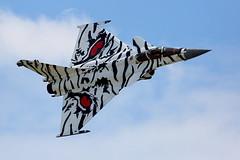 Rafale M x 2 – French Navy (Explored) (Robin M Morrison) Tags: rafale m tiger french navy yeovilton rnasyeoviltonairday 2017