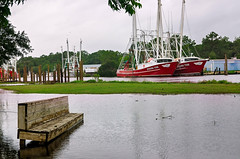 Tropical Storm Cindy flooding on Shell Belt Road in Bayou La Batre Alabama (CarmenSisson) Tags: alabama bayoulabatre gulfcoast stmargaretcatholicchurch stmargaret's tropicalstormcindy flood flooding shrimpboats storm tropicalstorm water weather usa