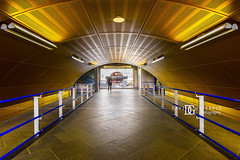Wood Lane London Underground Tube Station, London, UK (davidgutierrez.co.uk) Tags: london architecture art city photography interior davidgutierrezphotography nikond810 nikon urban travel color londonphotographer photographer uk londonunderground train station england unitedkingdom colors colours colour 伦敦 londyn ロンドン 런던 лондон londres londra europe beautiful cityscape davidgutierrez capital structure britain greatbritain ultrawideangle afsnikkor1424mmf28ged 1424mm d810 street arts rain people person tfl tube centrallondon buildings lights transport light design tubestation symmetry building indoor interiors