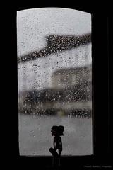 Boop in the Rain (Michel Radtke) Tags: santos sp brasil michelradtke michelradtkefotografia canon canoneos6d canonef24105mmf4 bethboop rain chuva wheater clima cold frio winter inverno