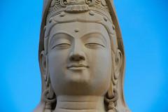 A DI DA PHAT QUAN THE AM BO TAT DAI THE CHI BO TAT GUANYIN KWANYIN BUDDHA 8498 (ketnoivietnam) Tags: amazing affectionate amitabha architecture art asia avalokitesvara awesome bangkok beautifull beijing palace bhutan bodhisattva bouddha buddha tooth relic temple buddhism buddhist china chinatown chua excellent fantastic flickraward gold golden guanyin hainan hdr history hong kong indian information japan korea kuanim kuanyin kwanyin laos laughing light lotus flower lovely mantra meditation mount emei museum