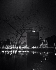 Murky Gloom (helenwang11) Tags: park tree grass lake building dark murky gloomy black sky neon light bw