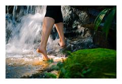 Nynph (eduardo.kobs) Tags: woods grove forest river fall water nynph ninfa bosque riacho cachueira arvoredo encontro aparição outdoor natureza nature