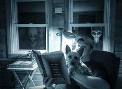 Bedtime Stories (Farmernudie) Tags: books reading dog terrier night dark shadows aliens eyes stalker windows den watchers spying spy darkness late bedtime stories