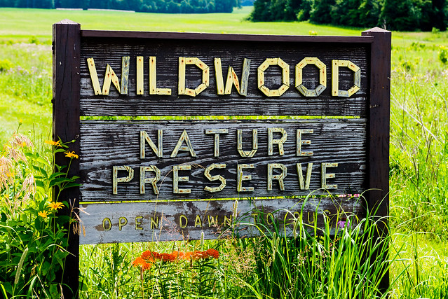 Wildwood Nature Preserve - July 5, 2017