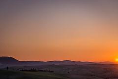 DSC_0716.jpg (saladino85) Tags: tuscana tuscany scenery sunset trees italy green hills typical holiday landscape
