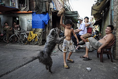 Playing together (-clicking-) Tags: streetphotography streetlife dailylife life dog pet alley together animal people place saigon vietnam asia asian children boy childhood