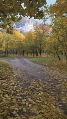 Осень в Святых Горах