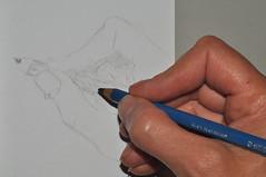 meine rechte hand (nirak68) Tags: rechtehand zeichnen zeichnung drawing myrighthand 2017ckarinslinsede 189365 meinerechtehand lübeck deutschland schleswigholsteinkreisfreiehansestadtlübeck ger bleistift pencil hand flickrfriday