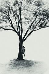 Tree (Elisa.z) Tags: 18200 2017 arbre canon70d highkey japon nara silhouette streetphotography
