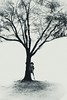 Tree (elizzzzza67) Tags: 18200 2017 arbre canon70d highkey japon nara silhouette streetphotography