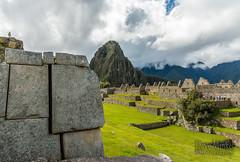 Machu Picchu -_DSC0629